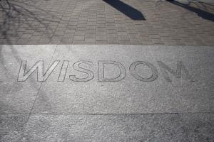 Wisdom by romec1