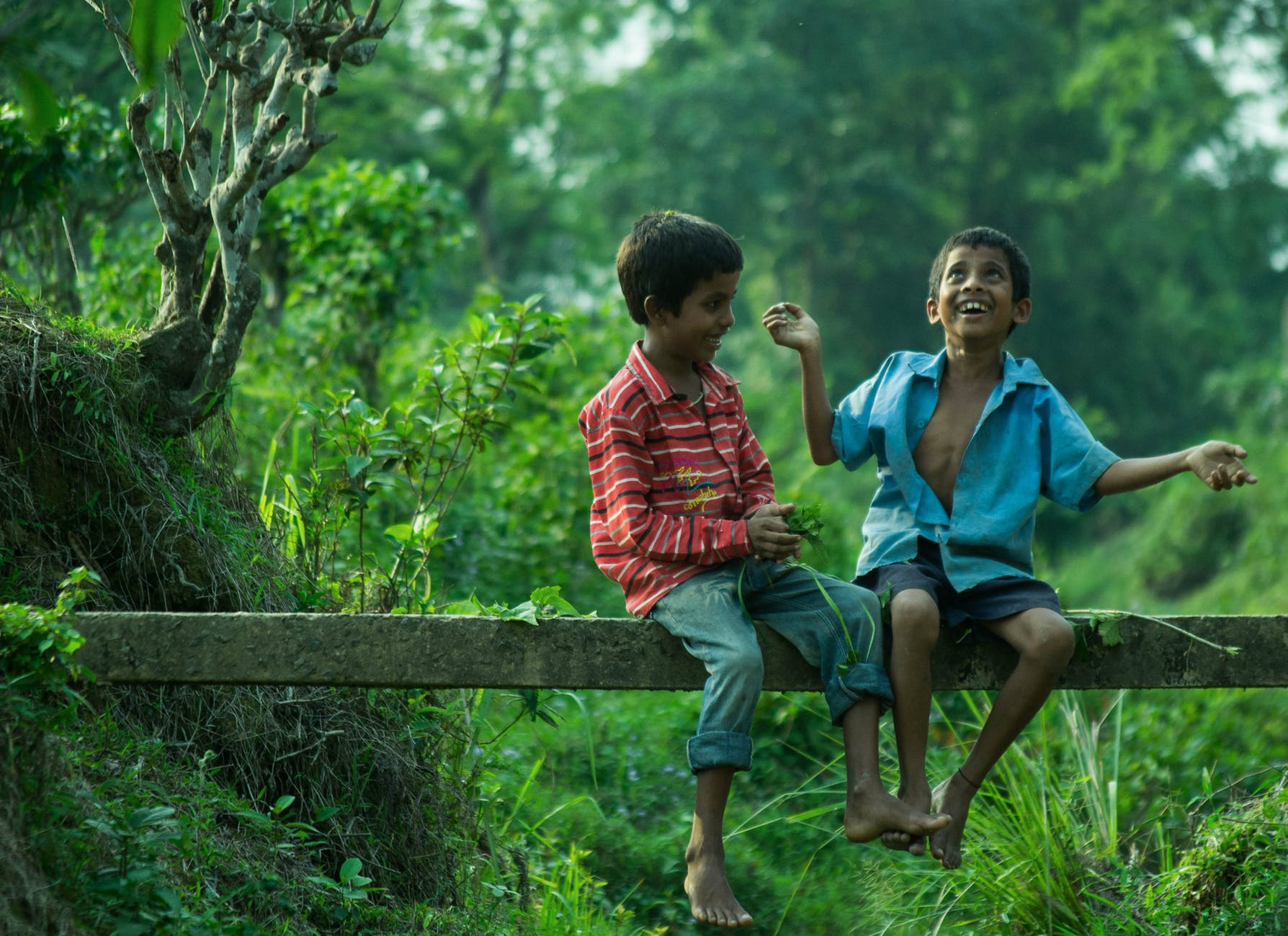 two boys sitting on gray wood plank